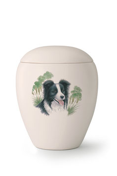 Dierenurn Border Collie