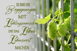 Es sind die Begegnungen mit Lieblingsmenschen... Motiv Hopfen im Zaun