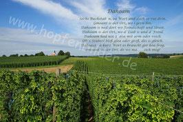 """""""Dahoam"""" Hopfengarten"""
