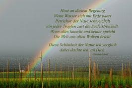Regenbogen Text C. Scharf