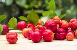 ACEROLA - Fruchtpulver, leicht säuerlich