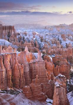 Winter Garden  |  USA  |  120x90 cm