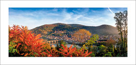 Panorama hc2005167