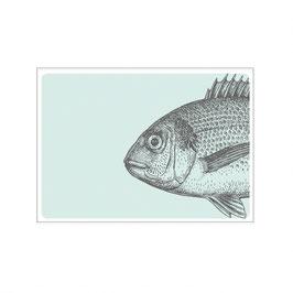 """Maritime Postkarte """"Vintage Fisch"""""""