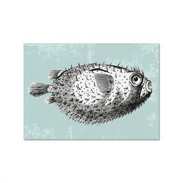 """Maritime Postkarte """"Vintage Kugelfisch"""""""
