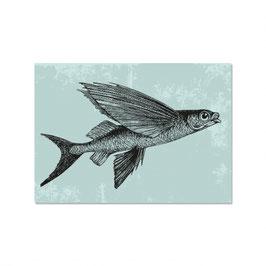 """Maritime Postkarte """"Vintage fliegende Fische"""""""