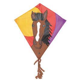 HQ Eddy Drache Pferd Bronco