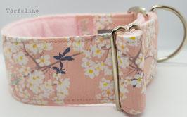 Kirschblüten* Rosa