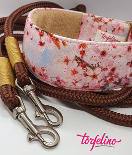CherryCherry mit brauner Tauleine & Takelung in Beige