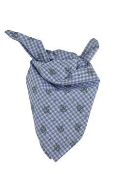 Jungs Trachten-Tuch blau Vichy mit Blümchen