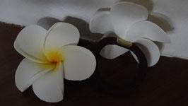 Haargummi Frangipani weiss/gelb (1 Stück) (7 cm)