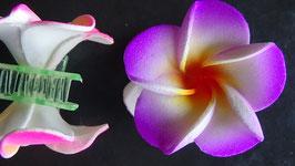Haarklemme klein Frangipani violett