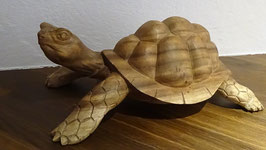 Landschildkröte gross (30 cm)