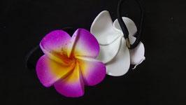 Haargummi Frangipani violett/gelb (1 Stück)