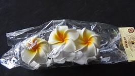 Haarklemme gross Frangipani weiss/gelb (mit 6 Frangipani Blüten)