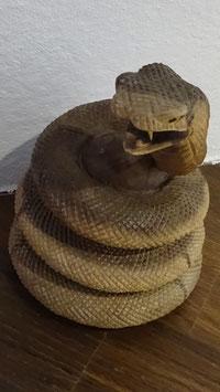 Schlange aus Suar-Holz geschnitzt (1)