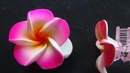 Haarklemme klein Frangipani rosa