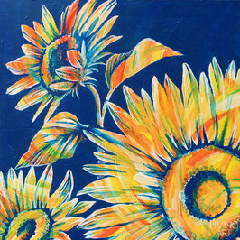 SUMMER - sunflower