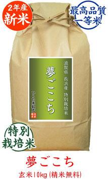 夢ごこち 玄米10kg