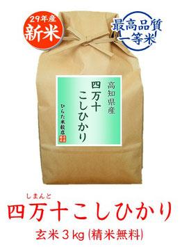 四万十こしひかり 玄米3kg