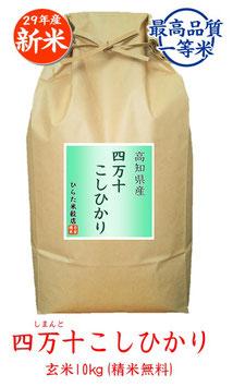 四万十こしひかり 玄米10kg