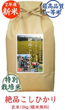 絶品こしひかり 玄米10kg