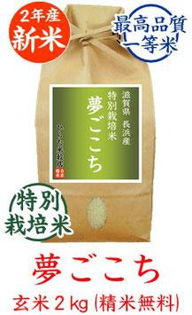 夢ごこち 玄米2kg