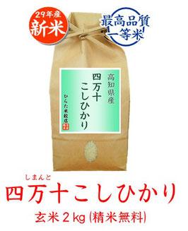 四万十こしひかり 玄米2kg