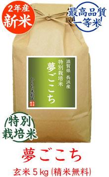 夢ごこち 玄米5kg