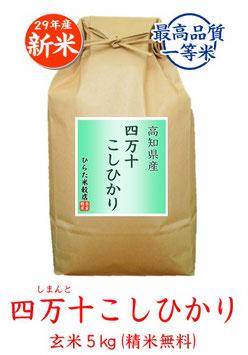 四万十こしひかり 玄米5kg