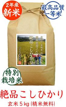 絶品こしひかり 玄米5kg