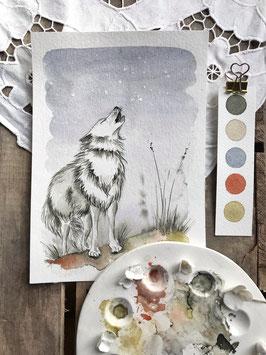 "Aquarelle ""Milan le loup blanc"""