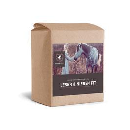 Leber & Nieren Fit