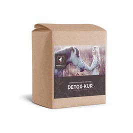 Detox-Kur