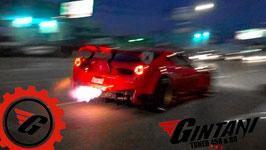 Gintani Ferrari ECU Tune