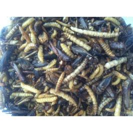 Cушеные насекомые