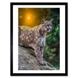 Ben The Rules Jaguar LV Dream A3 Print 025