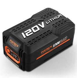 Batteria Litio Samsung 120V