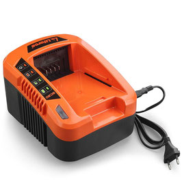 Caricabatterie ultra rapido 40V FUXTEC