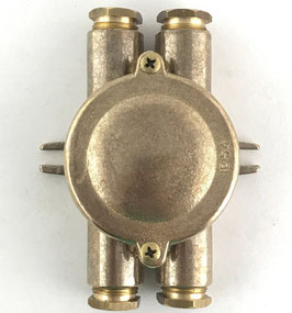Scatola Derivazione 2 esterni ottonato IP54