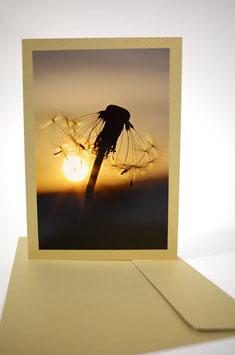 "Pusteblume 2 Sonnenuntergang ""glimmerdreams Blattgold"