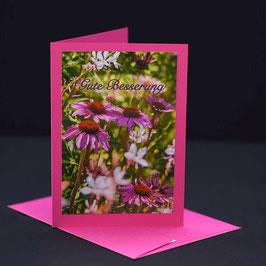 C6 Echinacea mit text. gute Besserung Kosmos pinker karte