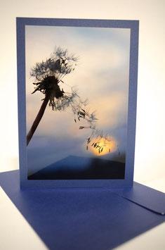 "Pusteblume 10 Sonnenuntergang ""glimmerdreams Aqua"