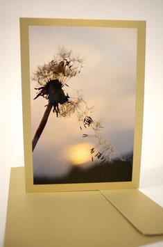 "Pusteblume 11 Sonnenuntergang ""glimmerdreams Blattgold"