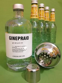 GINOTONICO