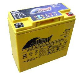 High Cranking AGM Battery