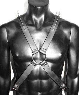 Warrior Harness #1/1