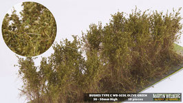 Welberg - SCOL 10 Büsche olivgrün, Höhe 3-4 cm