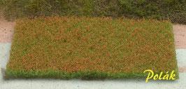 Polak - Blumenwiese rot (5971)