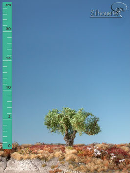 Silhouette 241-02 Kopfweide, Sommer, 1:87 / H0